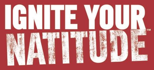 Natitude ignite logo rgb white